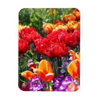 Ímã Ondas florais dos carmesins de Falln