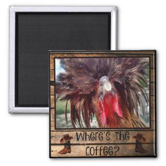 Imã Onde está o café com galinha polonesa