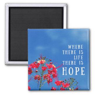 Imã Onde há uma vida há ímã da esperança