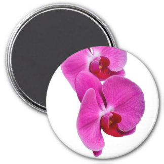 Imã Orchid round magnet