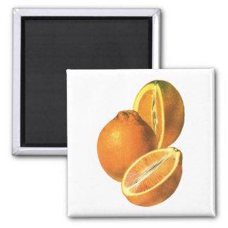 Imã Os alimentos do vintage, frutificam laranjas