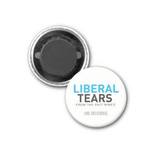 Imã Os rasgos liberais do ímã quadrado de 2 polegadas