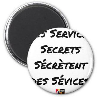 IMÃ OS SERVIÇOS SECRETOS SEGREGAM SEVÍCIAS
