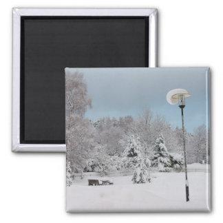 Imã País das maravilhas do inverno
