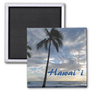 Imã Palmeira de Havaí pelo oceano