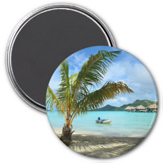 Imã Palmeira e ímã redondo do recurso do overwater