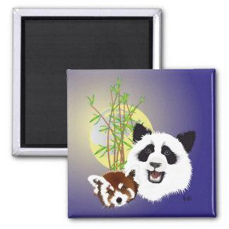 Imã Panda encontro íman