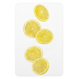 Ímã Partes de queda de limão