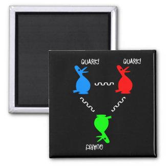 Imã Pato do Quark de Proton