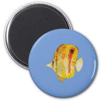 Imã Peixes geométricos
