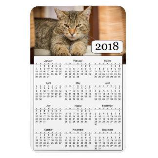 Ímã personalizado 2018 calendários da foto do gato