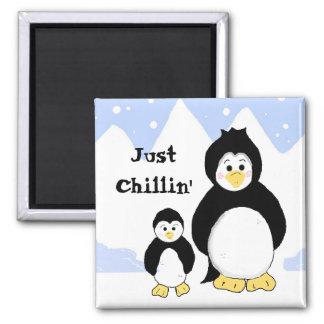 Imã Pinguins apenas que refrigeram