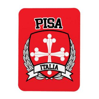 Ímã Pisa