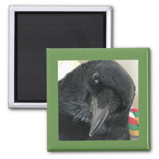 Imã Ponto de entrada o ímã do corvo com beira verde