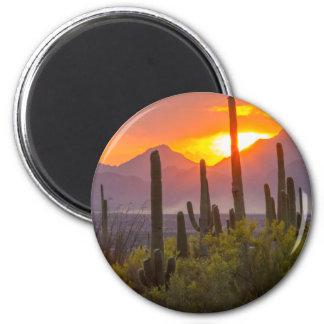 Imã Por do sol do cacto do deserto, arizona