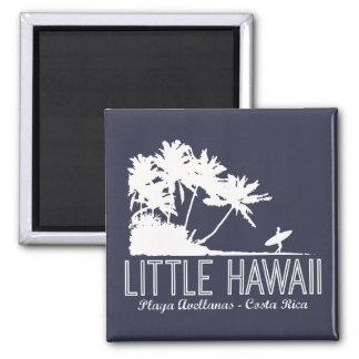 Imã Poucos surfistas de Havaí que surfam o ímã de