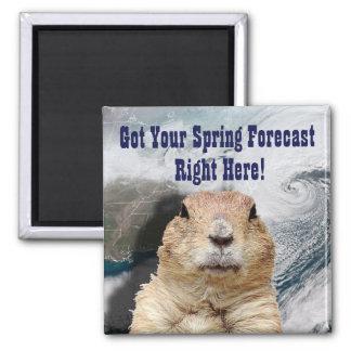 Imã Previsão do primavera de Groundhog
