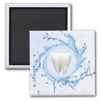 Imã Profissional médico do dente do dentista - ímã