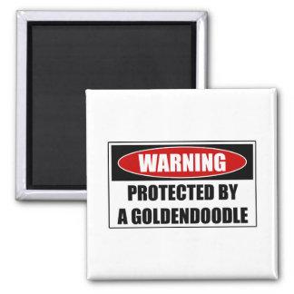 Imã Protegido por um Goldendoodle