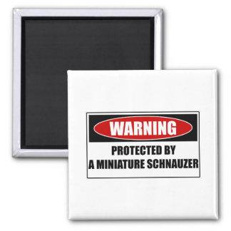 Imã Protegido por um Schnauzer diminuto