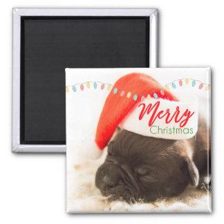 Imã Pug bonito do filhote de cachorro em um Natal