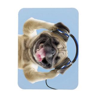 Ímã Pug com fones de ouvido, pug, animal de estimação