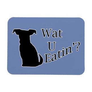 Ímã Que você que come o cão