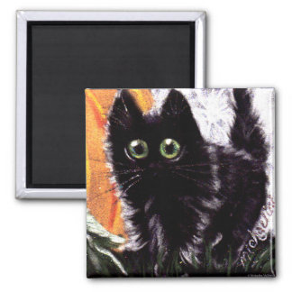 Imã Quem ímã do gato de Dat Scaredy