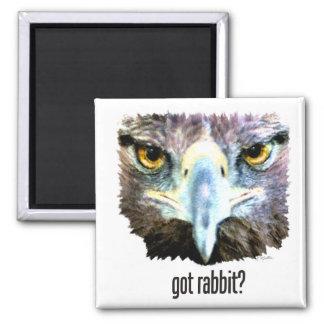 Imã Rabbitr obtido?