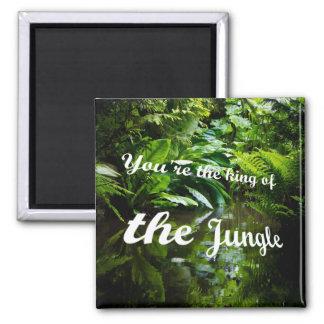Imã Rei da selva