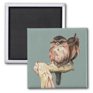 Imã Retrato da aguarela dos irmãos da coruja