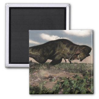 Imã Rex do tiranossauro que ruje em um triceratops