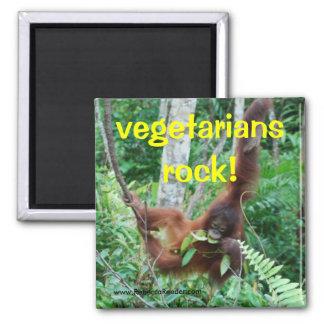 Imã Rocha dos vegetarianos do primata!
