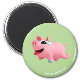 Imã Rosa the Pig does exercise