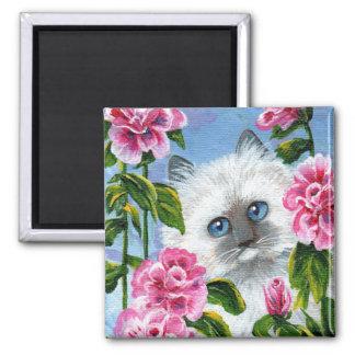 Imã Rosas engraçados Creationarts do gato Siamese de