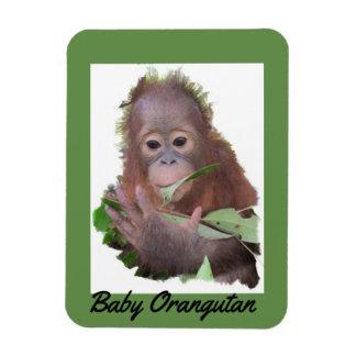 Ímã Salvamento do órfão do orangotango do bebê em