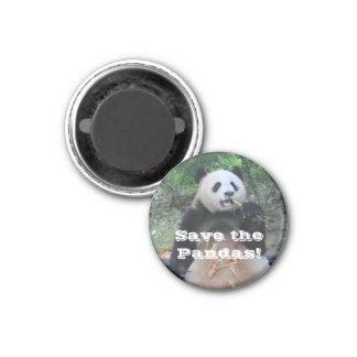Imã Salvar o ímã das pandas gigantes
