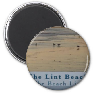 Imã satisfaça a praia TLB do fiapo