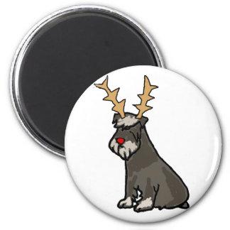Imã Schnauzer engraçado com Natal dos Antlers da rena