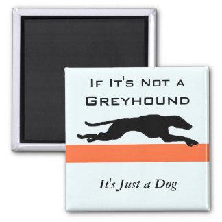 Imã Se seu não um galgo seu apenas um cão engraçado