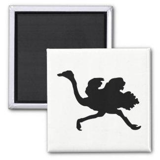 Imã Silhueta da avestruz