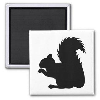Imã Silhueta do esquilo