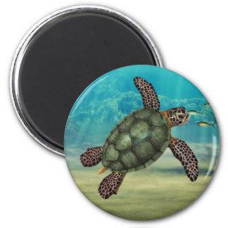 Imã Tartaruga de mar redonda