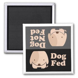 Imã Tempos da refeição de Fed do cão de Fed do cão não