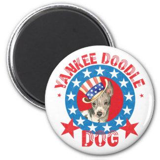 Imã Terrier calvo americano patriótico