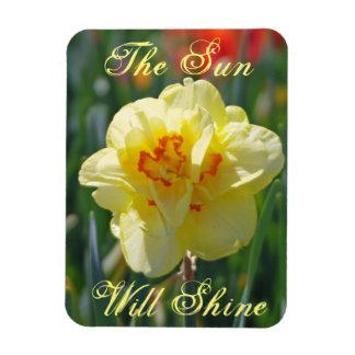 Ímã The Sun brilhará o jardim