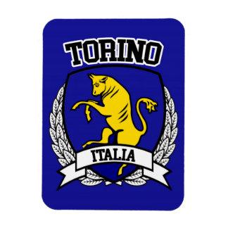 Ímã Torino