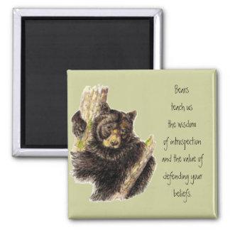 Imã Totem animal, ursos natureza, guia do espírito