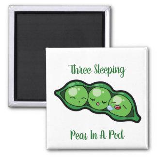 Imã Três ervilhas do sono em um vagem