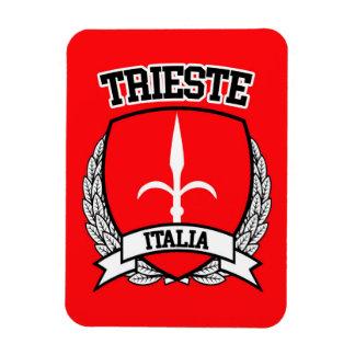 Ímã Trieste